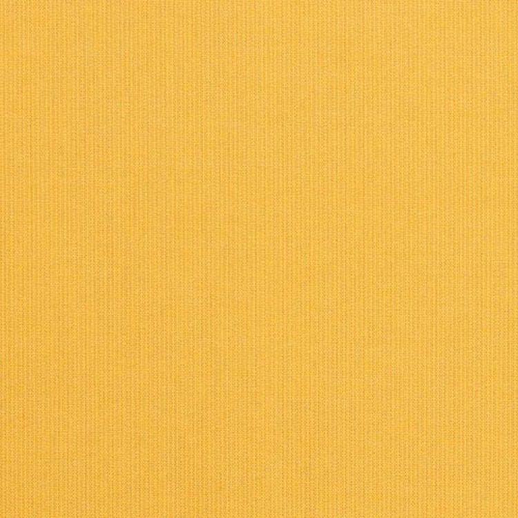 grade a solid Spectrum Daffodil